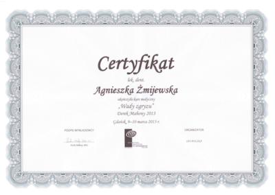 stomatolog Gdańsk CERTYFIKATskan1-1AP